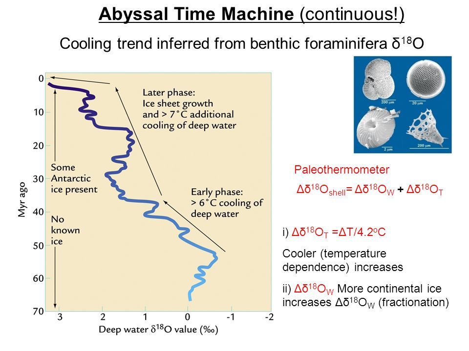 Cooling trend inferred from benthic foraminifera δ 18 O Abyssal Time Machine (continuous!) Δδ 18 O shell = Δδ 18 O W + Δδ 18 O T Paleothermometer i) Δδ 18 O T =ΔT/4.2 o C Cooler (temperature dependence) increases ii) Δδ 18 O W More continental ice increases Δδ 18 O W (fractionation)