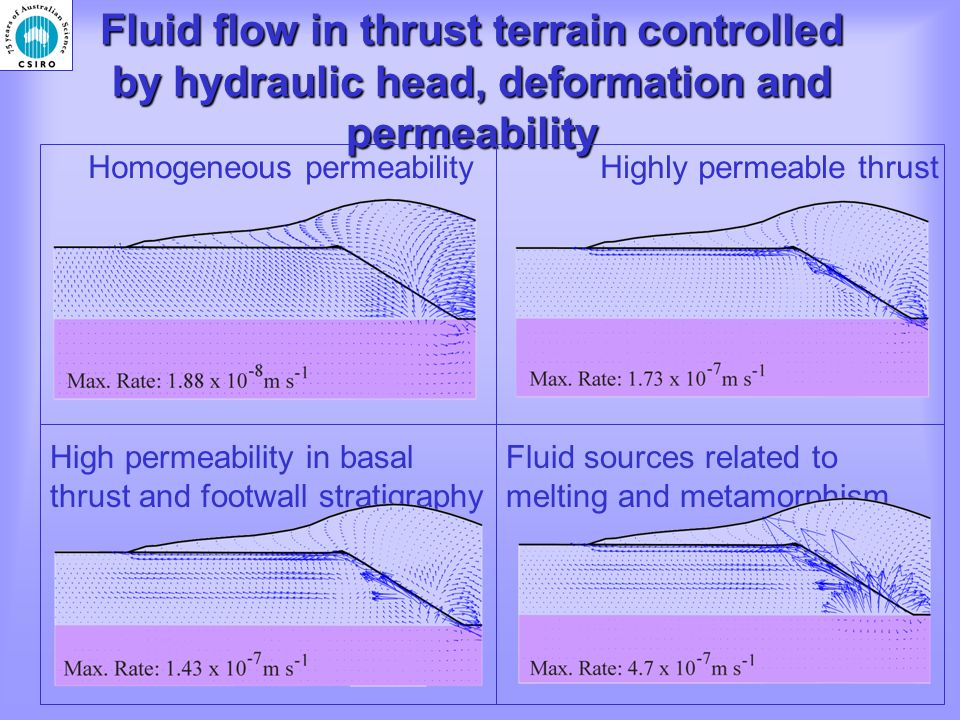 Fluid flow in thrust terrain controlled by hydraulic head, deformation and permeability Homogeneous permeabilityHighly permeable thrust Fluid sources related to melting and metamorphism High permeability in basal thrust and footwall stratigraphy