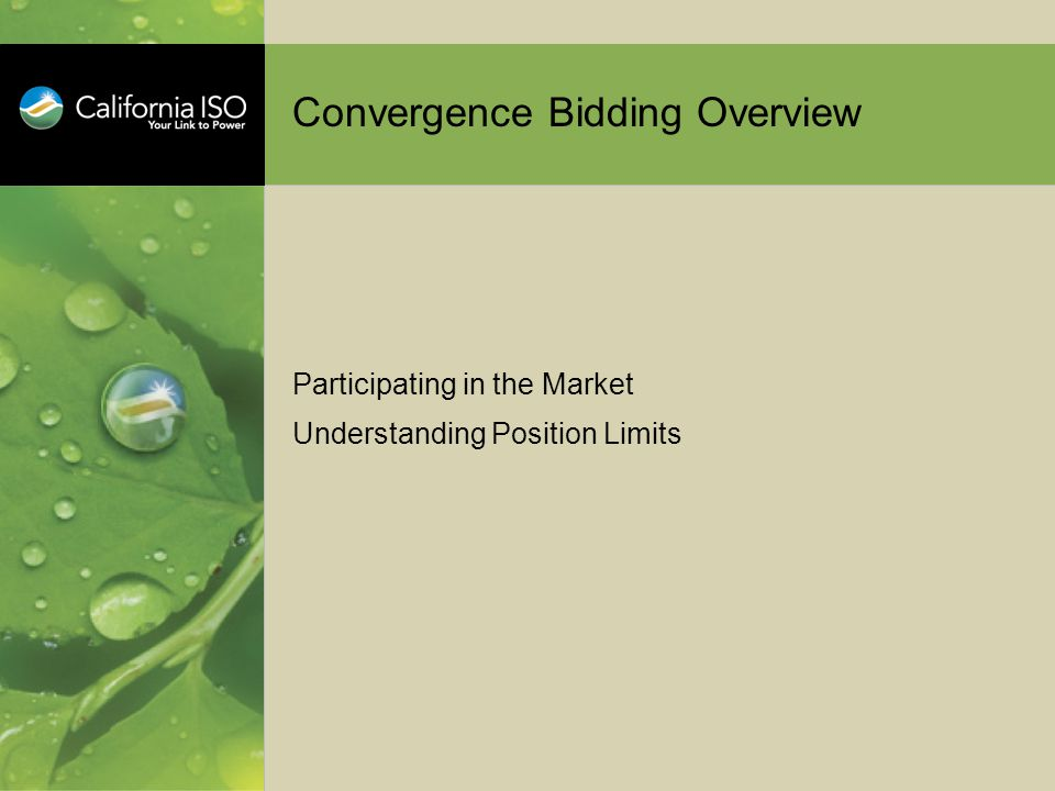 Convergence Bidding Overview Participating in the Market Understanding Position Limits