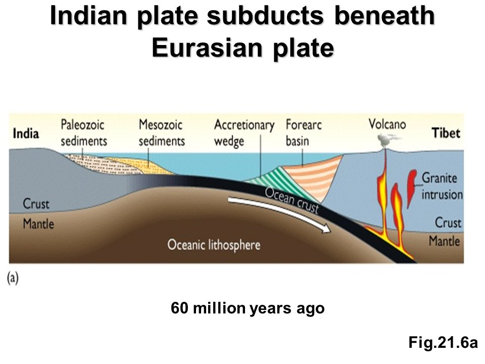 Indian plate subducts beneath Eurasian plate Fig.21.6a 60 million years ago