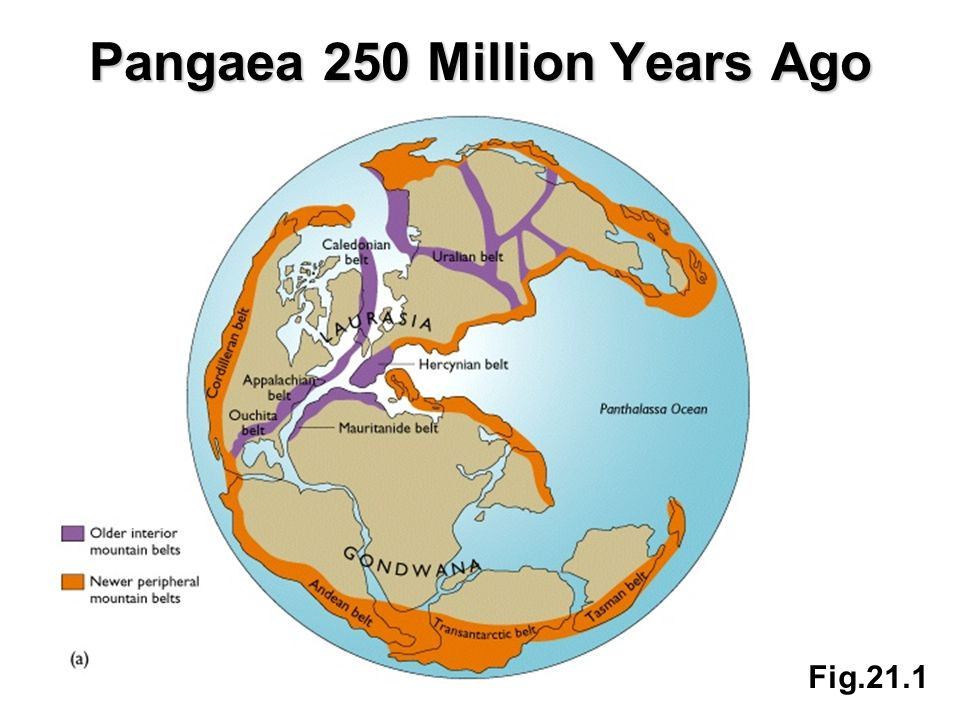 Pangaea 250 Million Years Ago Fig.21.1
