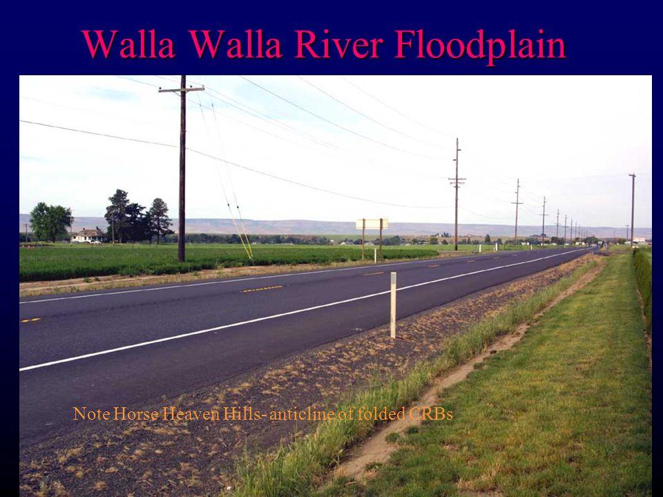 Walla Walla River Floodplain Note Horse Heaven Hills- anticline of folded CRBs