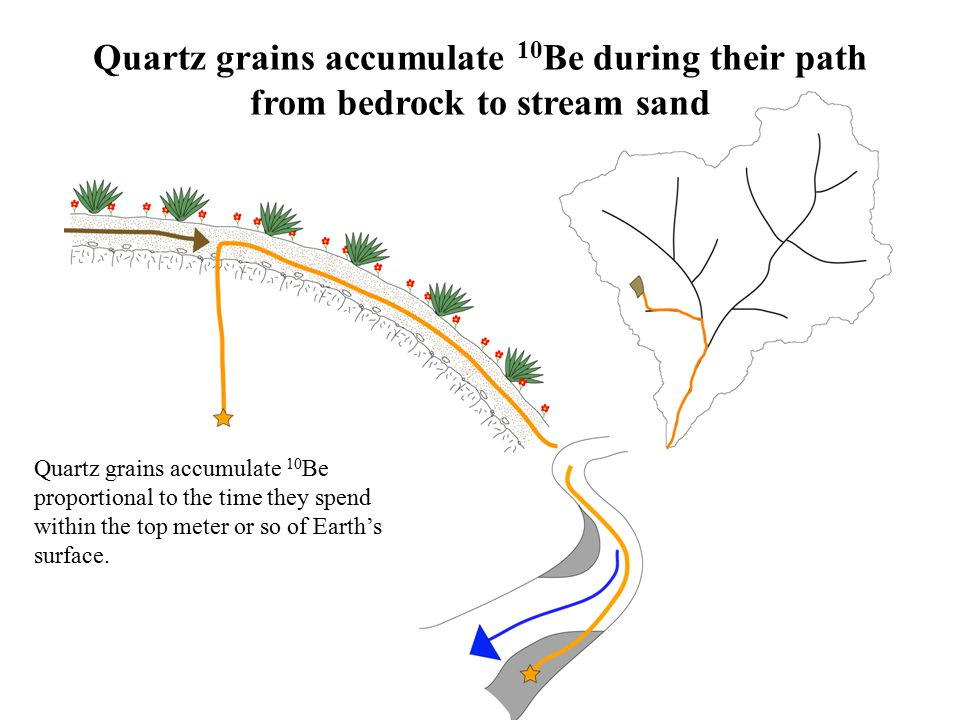 Quartz grains accumulate 10 Be proportional to the time they spend within the top meter or so of Earth's surface.