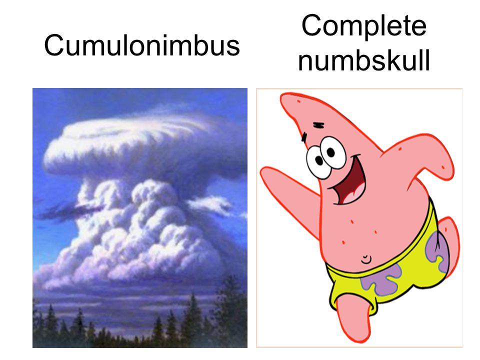 Complete numbskull