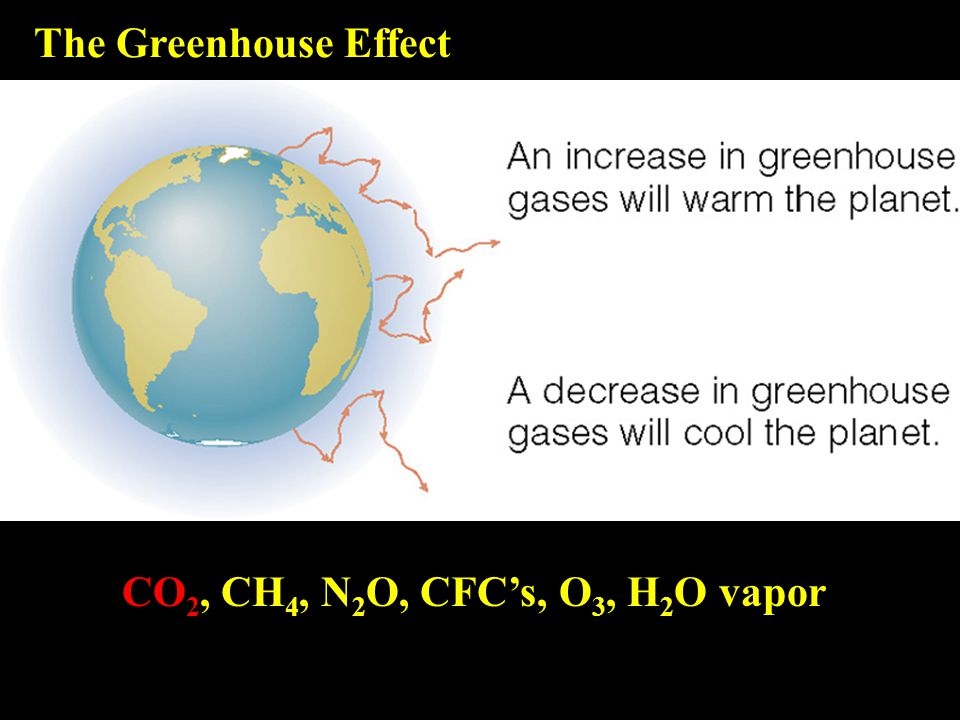 The Greenhouse Effect CO 2, CH 4, N 2 O, CFC's, O 3, H 2 O vapor