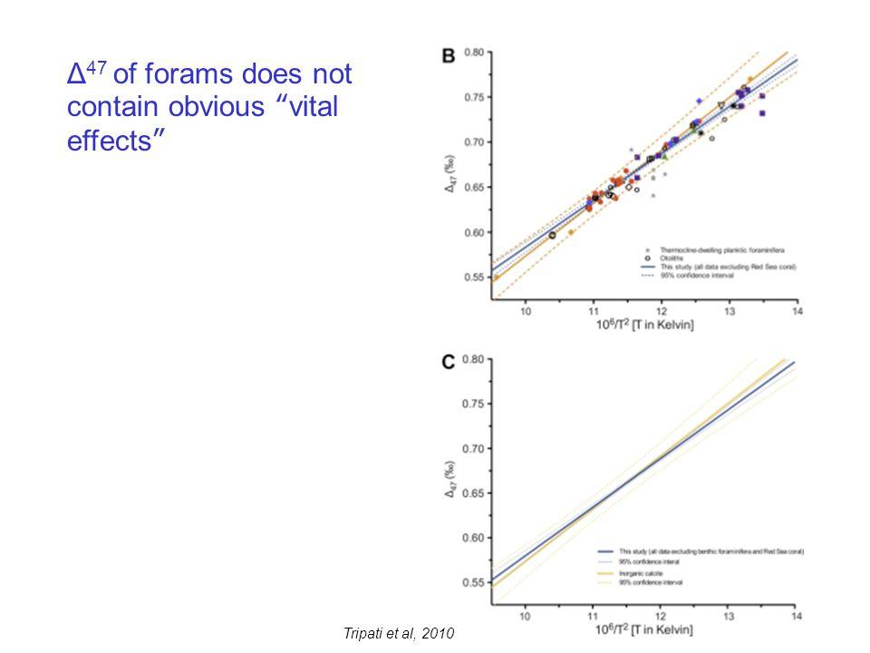 Δ 47 of forams does not contain obvious vital effects
