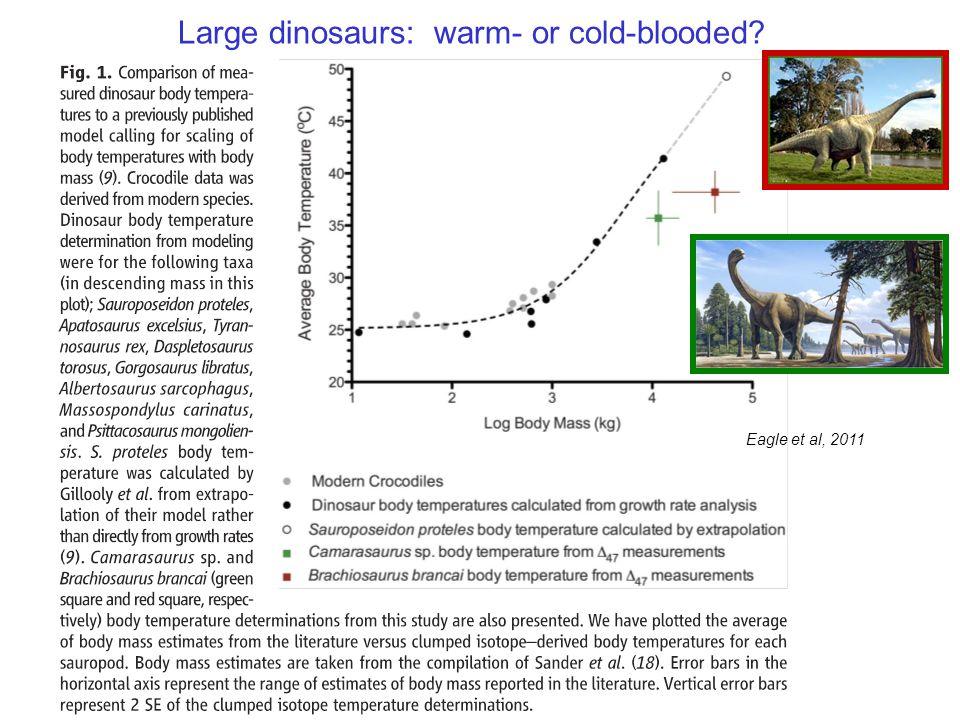 Eagle et al, 2011 Large dinosaurs: warm- or cold-blooded?