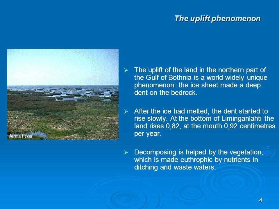 3 The uplift phenomenon   One third of Liminganlahti bay is less than one metre deep.
