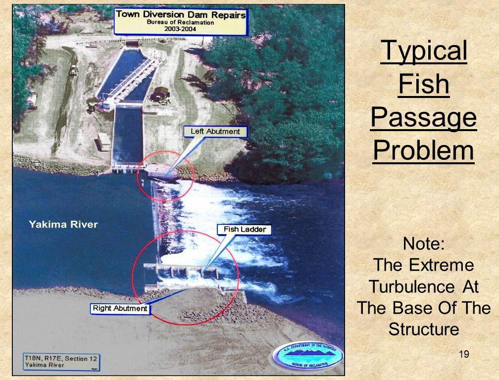 19 Typical Fish Passage Problem Note: The Extreme Turbulence At The Base Of The Structure