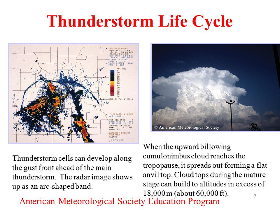 7 Thunderstorm Life Cycle Thunderstorm cells can develop along the gust front ahead of the main thunderstorm. The radar image shows up as an arc-shape