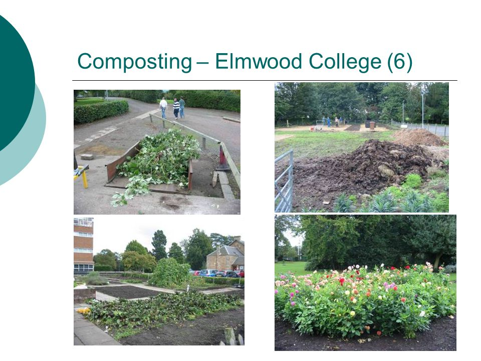 Composting – Elmwood College (6)