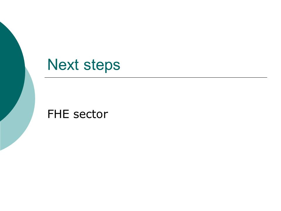 Next steps FHE sector