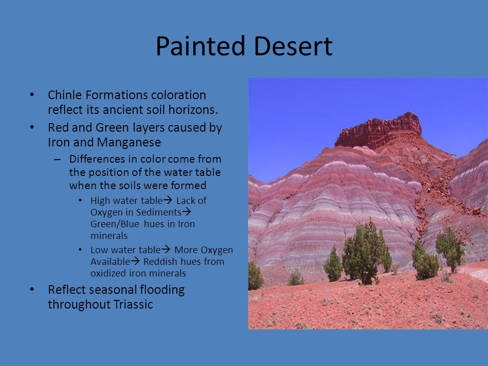 Painted Desert Chinle Formations coloration reflect its ancient soil horizons.