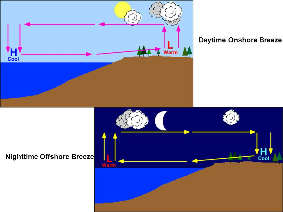 Daytime Onshore Breeze Nighttime Offshore Breeze