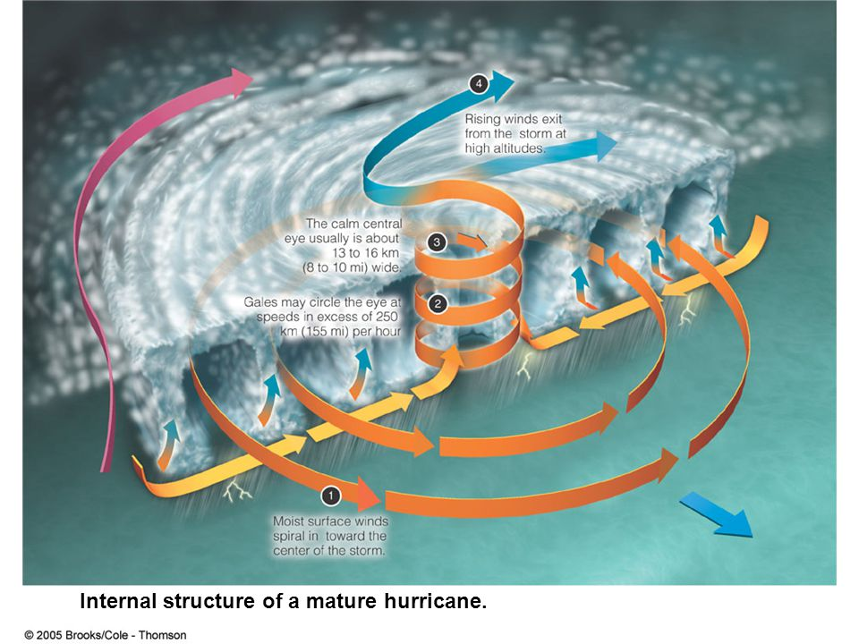 Internal structure of a mature hurricane.