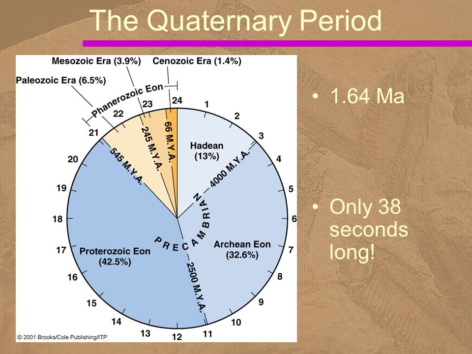1.64 Ma Only 38 seconds long! The Quaternary Period
