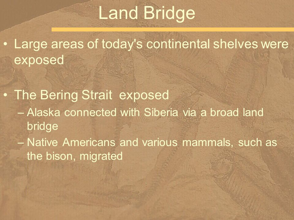Large areas of today s continental shelves were exposed The Bering Strait exposed –Alaska connected with Siberia via a broad land bridge –Native Americans and various mammals, such as the bison, migrated Land Bridge