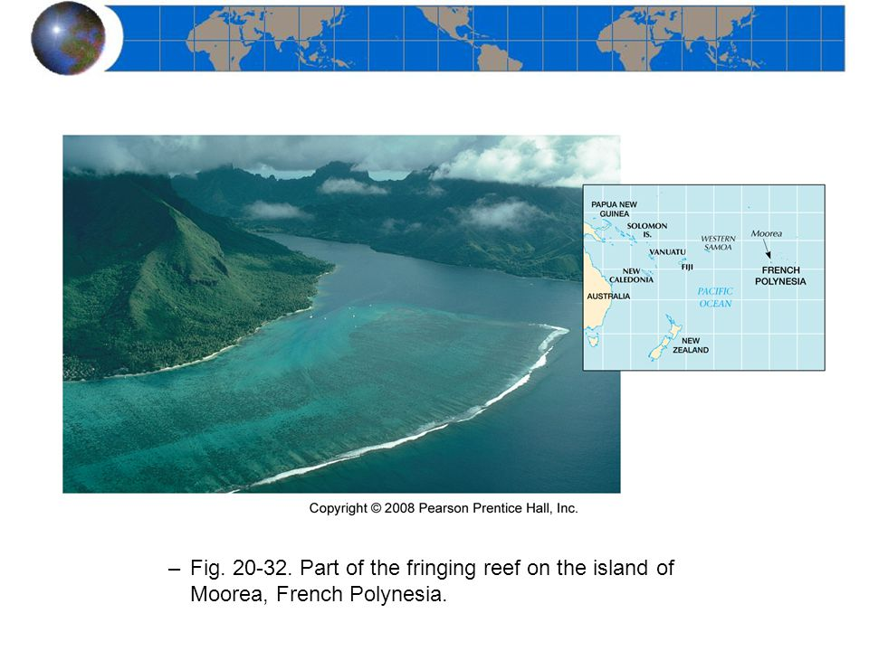 –Shallow-water Platforms Australia's Great Barrier Reef –Fig. 20-30