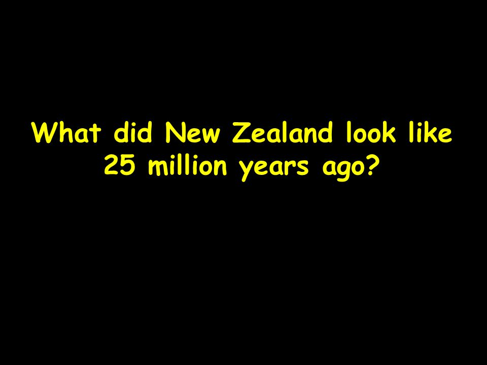 What did New Zealand look like 25 million years ago?