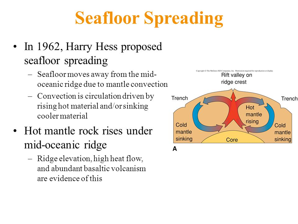Seafloor Spreading In 1962, Harry Hess proposed seafloor spreading –Seafloor moves away from the mid- oceanic ridge due to mantle convection –Convection is circulation driven by rising hot material and/or sinking cooler material Hot mantle rock rises under mid-oceanic ridge –Ridge elevation, high heat flow, and abundant basaltic volcanism are evidence of this