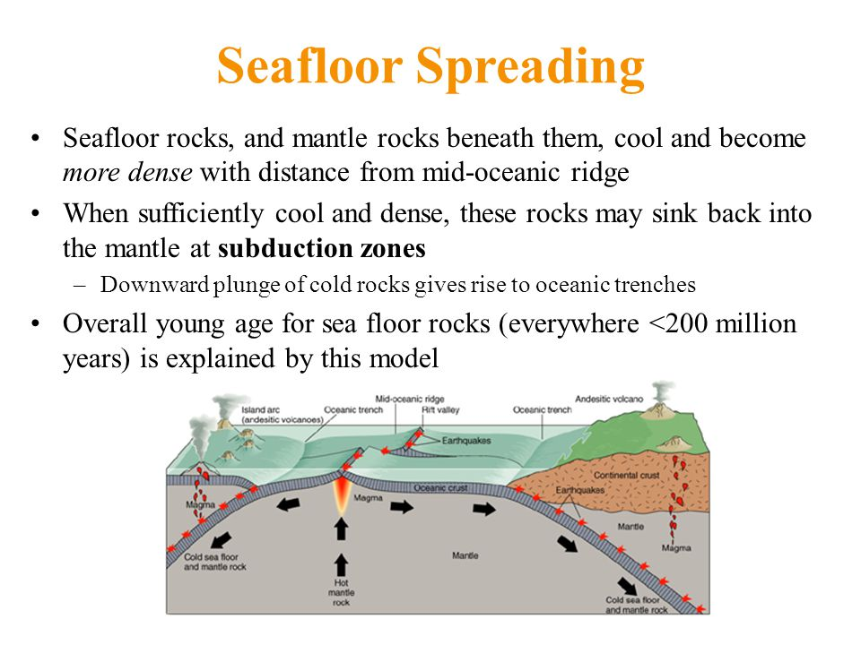 Seafloor Spreading Seafloor rocks, and mantle rocks beneath them, cool and become more dense with distance from mid-oceanic ridge When sufficiently cool and dense, these rocks may sink back into the mantle at subduction zones –Downward plunge of cold rocks gives rise to oceanic trenches Overall young age for sea floor rocks (everywhere <200 million years) is explained by this model