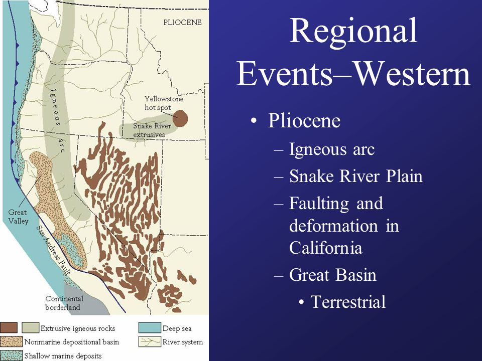 Regional Events–Western Pliocene –Igneous arc –Snake River Plain –Faulting and deformation in California –Great Basin Terrestrial