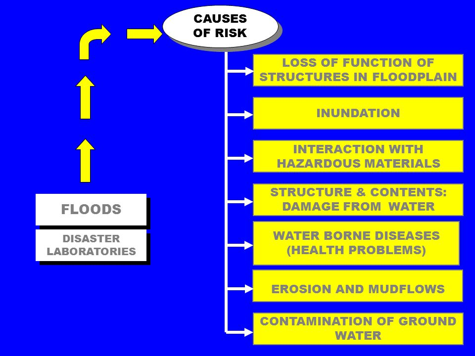 LOSS OF FUNCTION OF STRUCTURES IN FLOODPLAIN FLOODS INUNDATION INTERACTION WITH HAZARDOUS MATERIALS STRUCTURE & CONTENTS: DAMAGE FROM WATER WATER BORNE DISEASES (HEALTH PROBLEMS) EROSION AND MUDFLOWS CONTAMINATION OF GROUND WATER CAUSES OF RISK DISASTER LABORATORIES