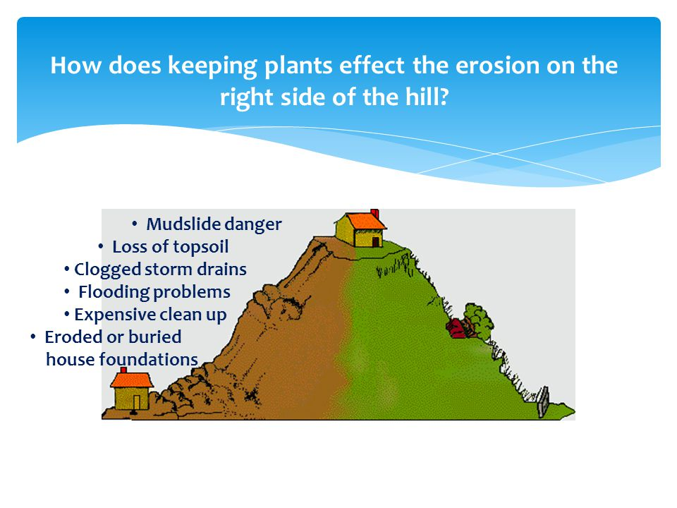 Mudslide danger Loss of topsoil Clogged storm drains Flooding problems Expensive clean up Eroded or buried house foundations Soil in place Less clean up Minimum erosion Protection for house foundations How vegetation affects erosion..