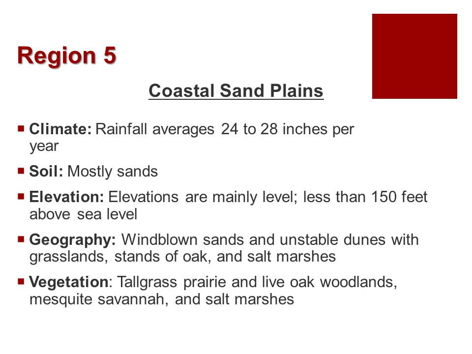Region 5 Coastal Sand Plains  Climate: Rainfall averages 24 to 28 inches per year  Soil: Mostly sands  Elevation: Elevations are mainly level; less