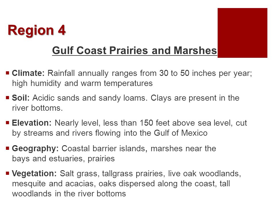 Region 5 Coastal Sand Plains  Climate: Rainfall averages 24 to 28 inches per year  Soil: Mostly sands  Elevation: Elevations are mainly level; less than 150 feet above sea level  Geography: Windblown sands and unstable dunes with grasslands, stands of oak, and salt marshes  Vegetation: Tallgrass prairie and live oak woodlands, mesquite savannah, and salt marshes