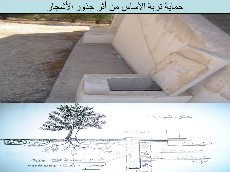 حماية تربة الأساس من أثر جذور الأشجار