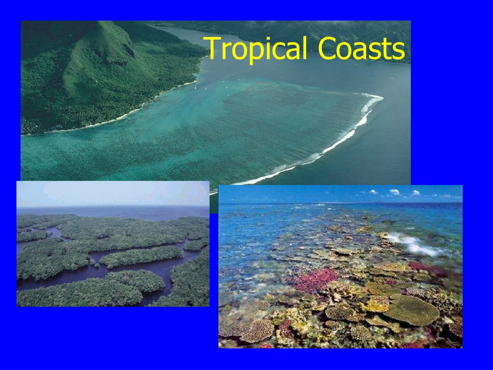 Tropical Coasts