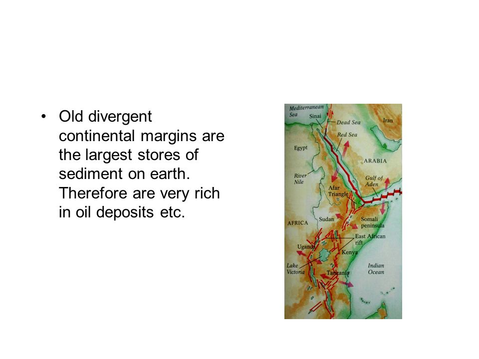 Old divergent continental margins are the largest stores of sediment on earth. Therefore are very rich in oil deposits etc.