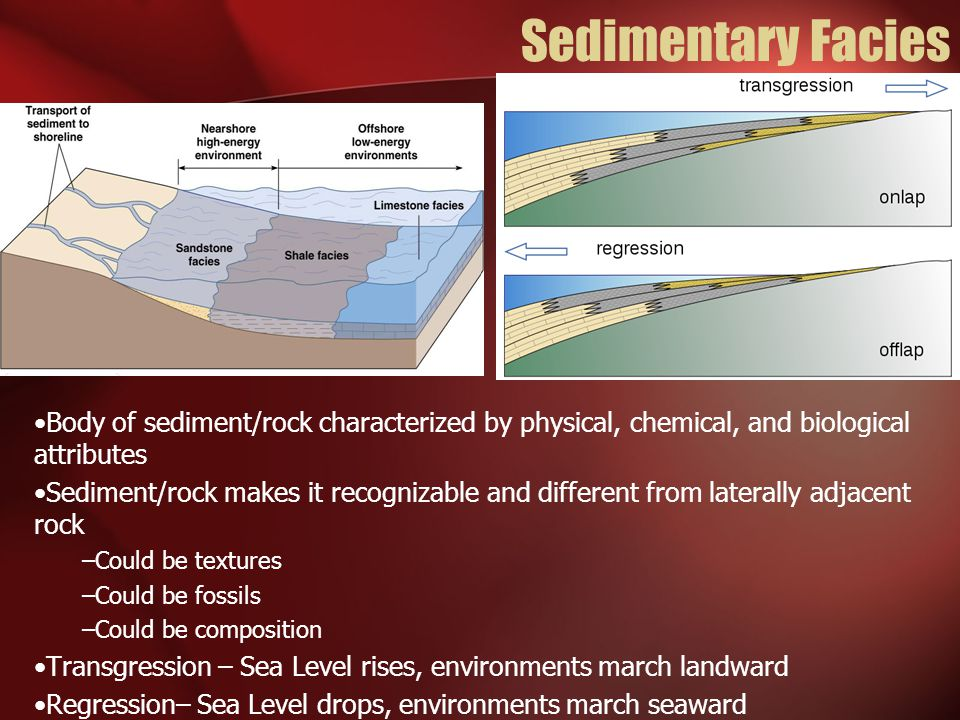 Sedimentary Facies Body of sediment/rock characterized by physical, chemical, and biological attributes Sediment/rock makes it recognizable and differ