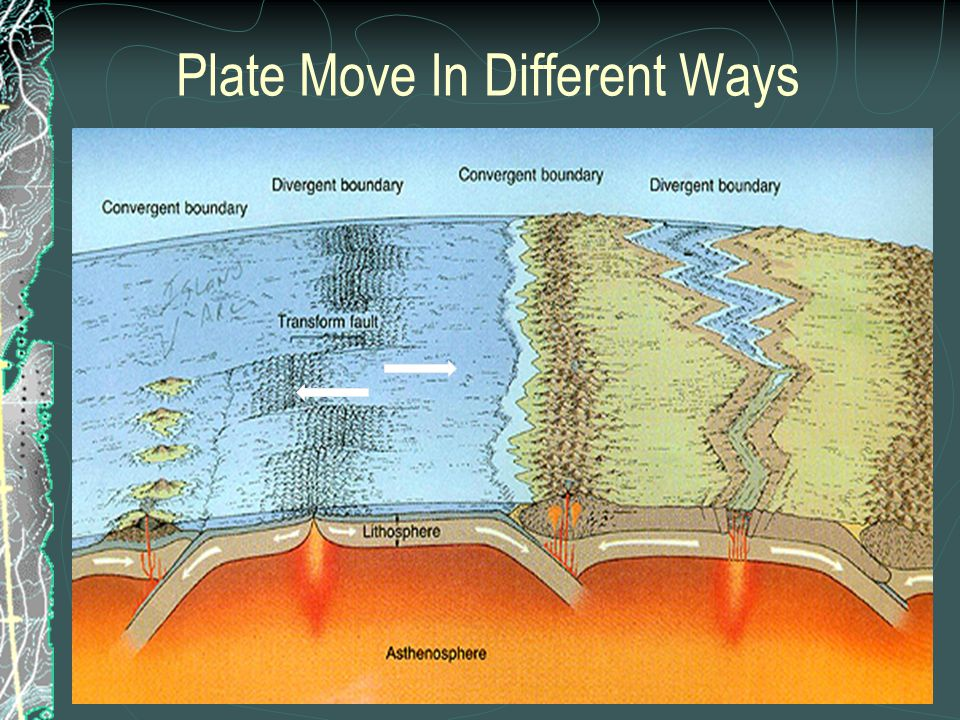 Plate Move In Different Ways