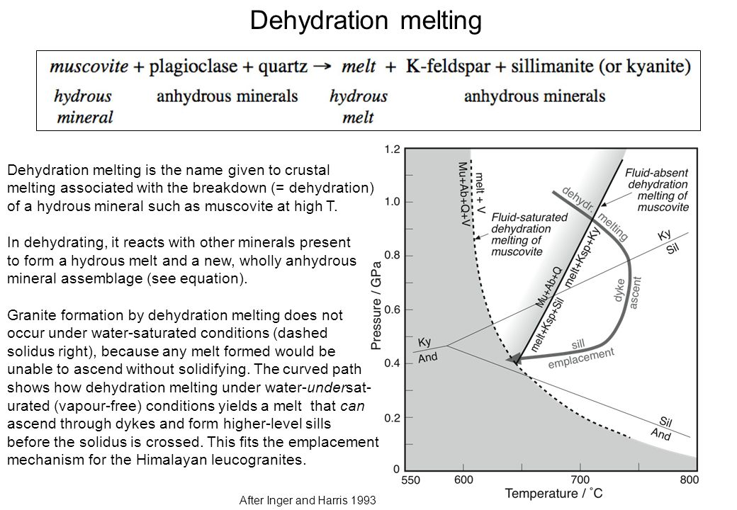 Dehydration melting After Inger and Harris 1993 Dehydration melting is the name given to crustal melting associated with the breakdown (= dehydration) of a hydrous mineral such as muscovite at high T.