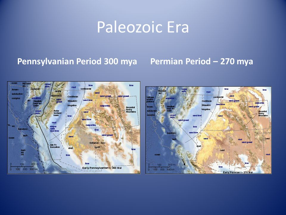 Paleozoic Era Permian Period – 270 myaPennsylvanian Period 300 mya