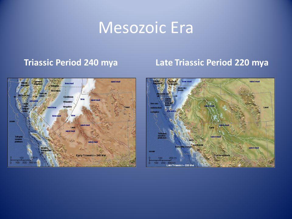 Mesozoic Era Triassic Period 240 mya Late Triassic Period 220 mya