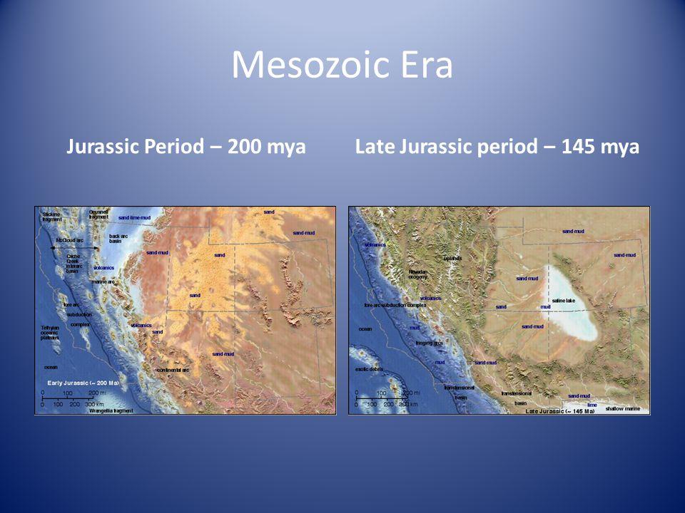 Mesozoic Era Jurassic Period – 200 myaLate Jurassic period – 145 mya