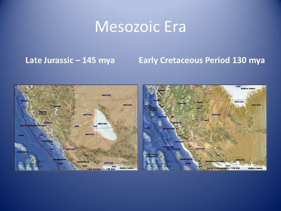 Mesozoic Era Late Jurassic – 145 myaEarly Cretaceous Period 130 mya