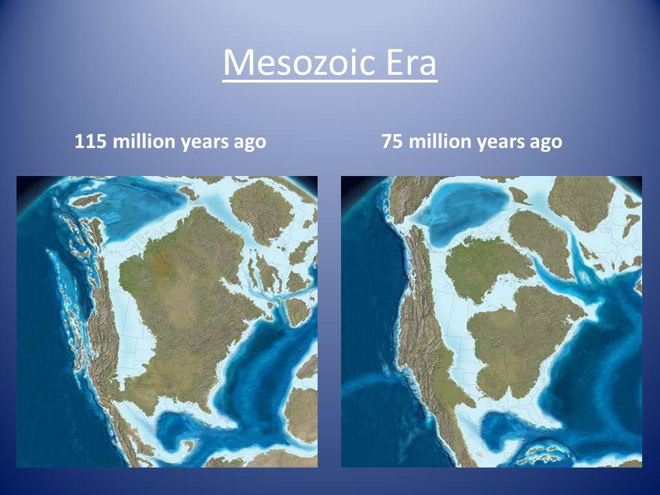 Mesozoic Era 115 million years ago 75 million years ago