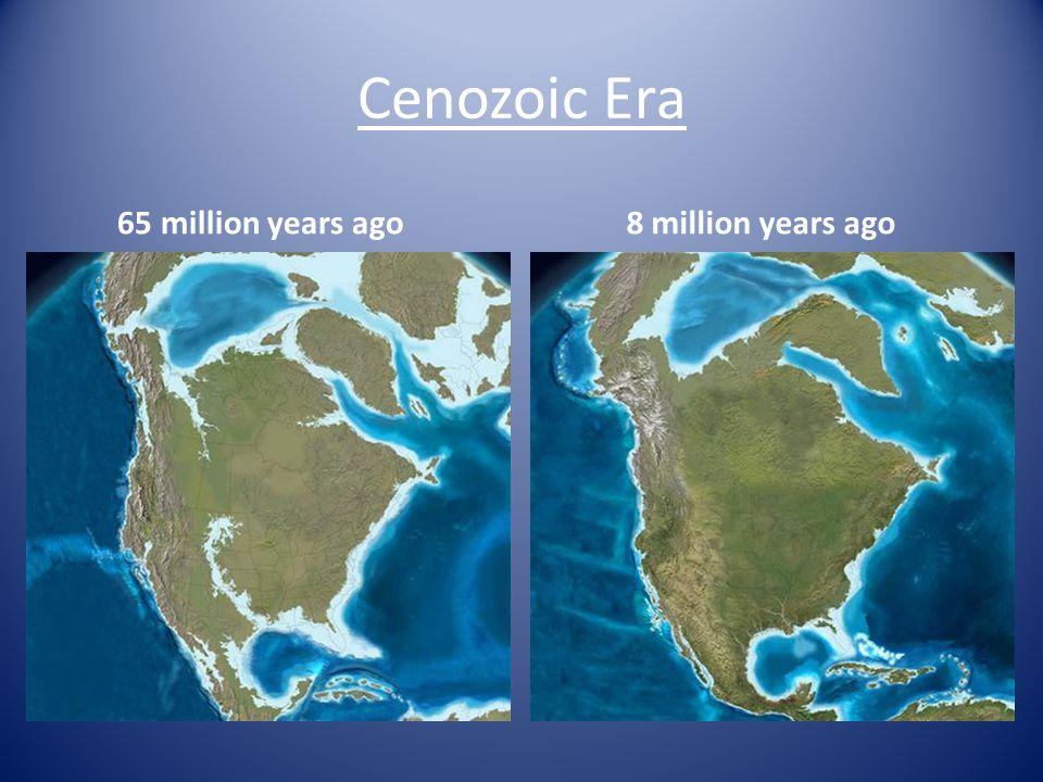 Cenozoic Era 65 million years ago 8 million years ago