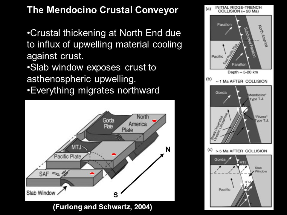S N (Furlong and Schwartz, 2004) The Mendocino Crustal Conveyor Crustal thickening at North End due to influx of upwelling material cooling against crust.