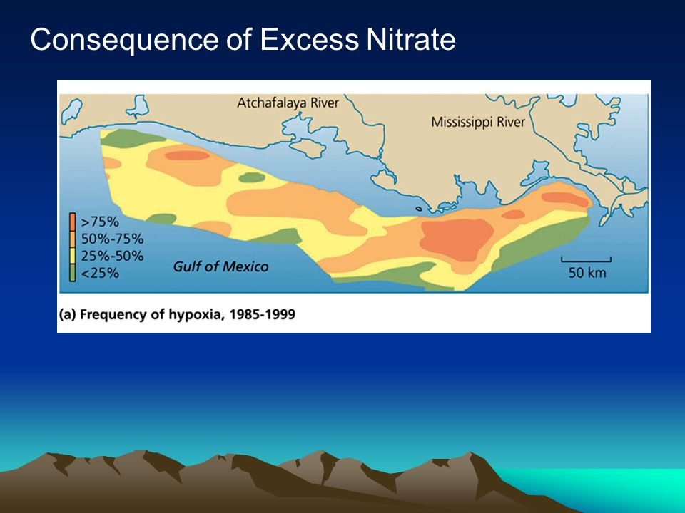 Consequence of Excess Nitrate