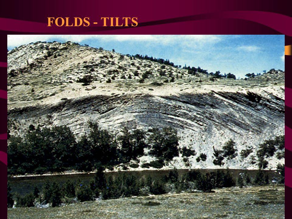 FOLDS - TILTS