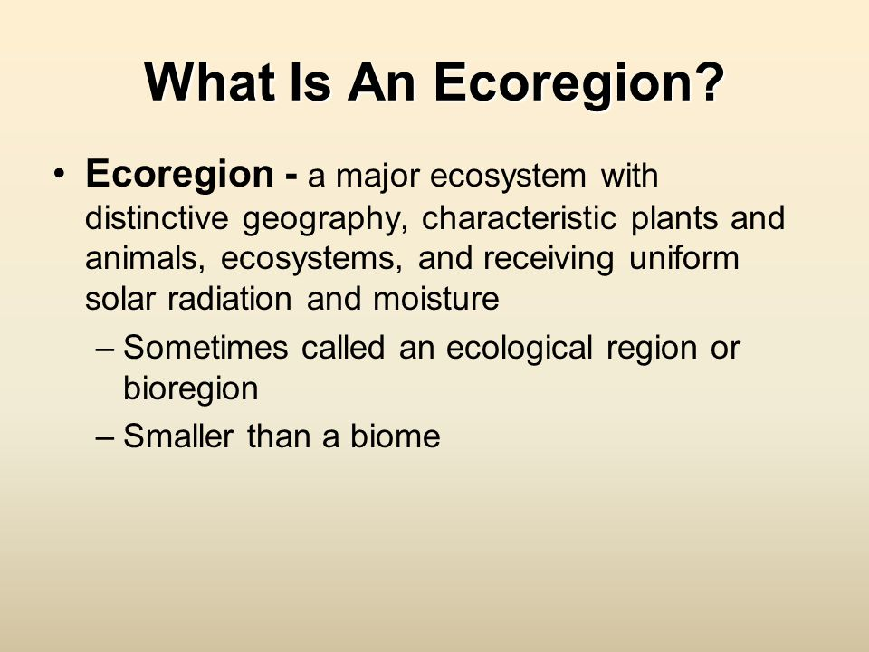 What Is An Ecoregion? Ecoregion - a major ecosystem with distinctive geography, characteristic plants and animals, ecosystems, and receiving uniform s