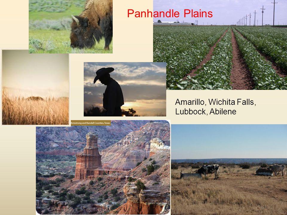 Amarillo, Wichita Falls, Lubbock, Abilene Panhandle Plains
