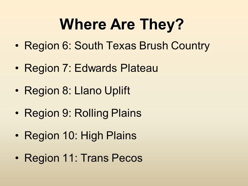 Where Are They? Region 6: South Texas Brush Country Region 7: Edwards Plateau Region 8: Llano Uplift Region 9: Rolling Plains Region 10: High Plains R