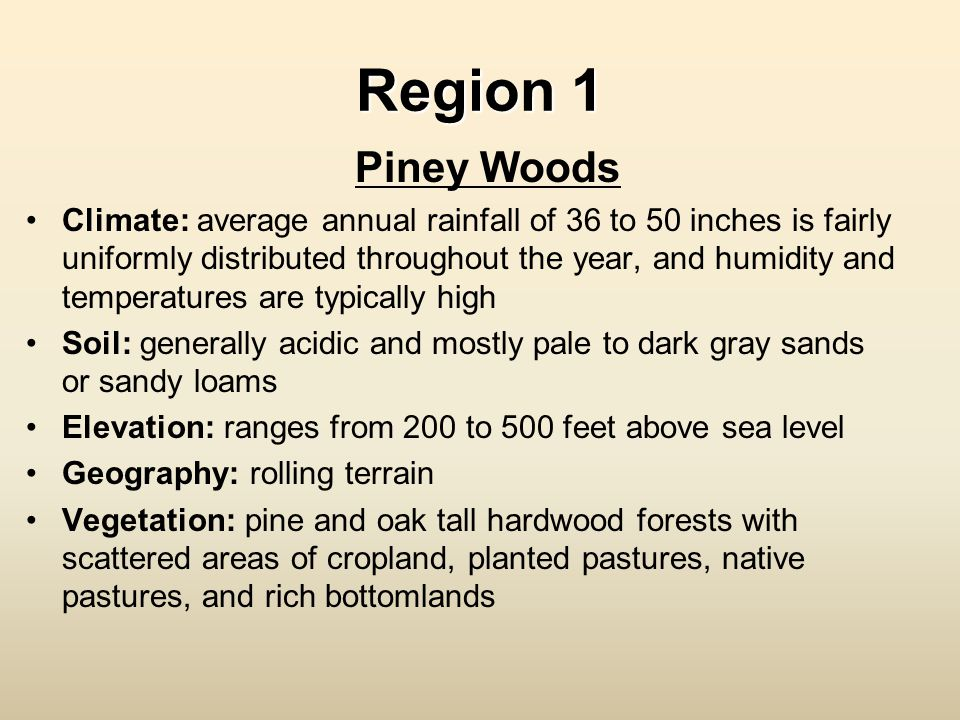 Region 1 Piney Woods Climate: average annual rainfall of 36 to 50 inches is fairly uniformly distributed throughout the year, and humidity and tempera