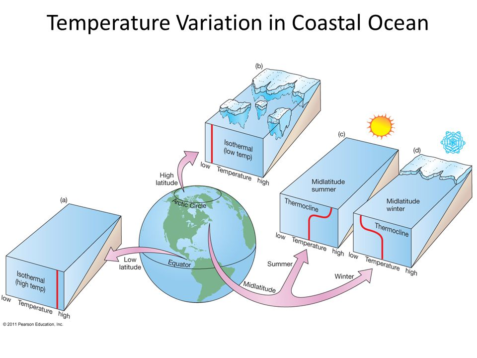 Temperature Variation in Coastal Ocean